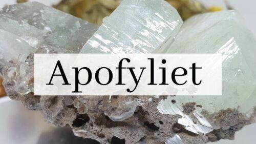 Apofylliet